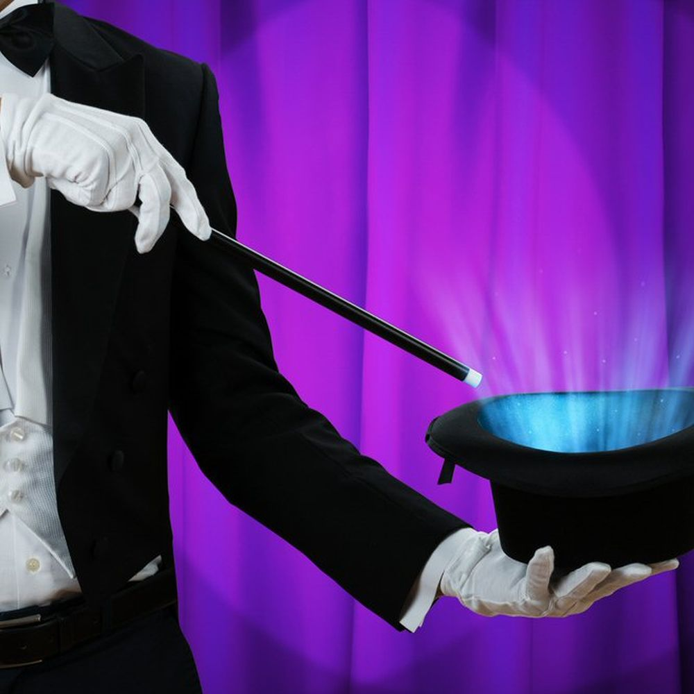 Wild Wednesday 'Magic Show' - 14th August - 10.30am