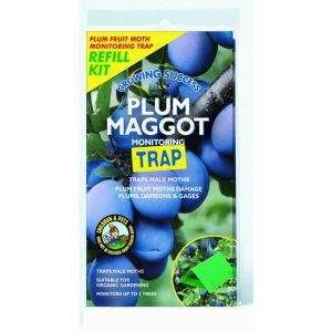 Vitax Plum Maggot Monitoring Trap Refill