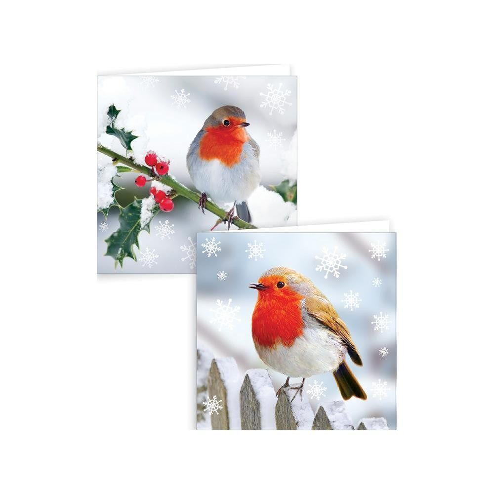 Giftmaker Photographic Robin Christmas Cards - Pack of 12