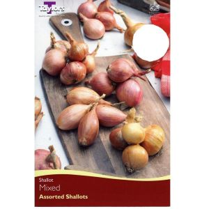 Taylors 12 Mixed Shallots