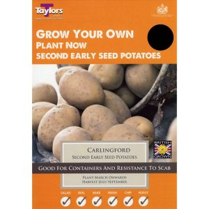 Taylors 10 Carlingford Second Early Seed Potatoes