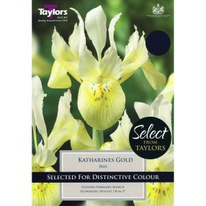 Taylors 9 Katharines Gold Iris Bulbs