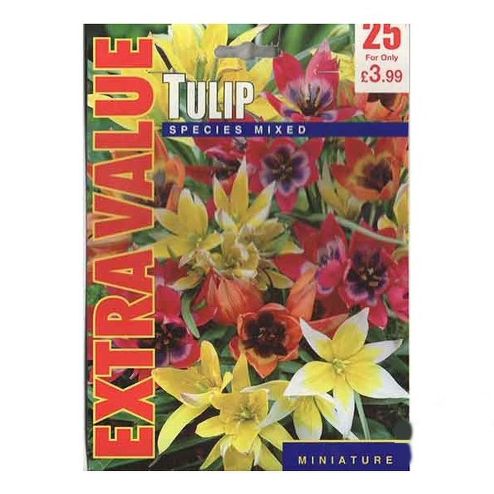 Taylors 25 Species Mixed Tulip Bulbs