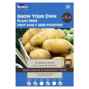 Taylors 10 Arran Pilot First Early Seed Potatoes
