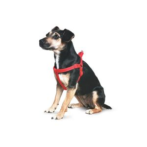 Ancol Extra Large Red Padded Nylon Dog Harness - 179320