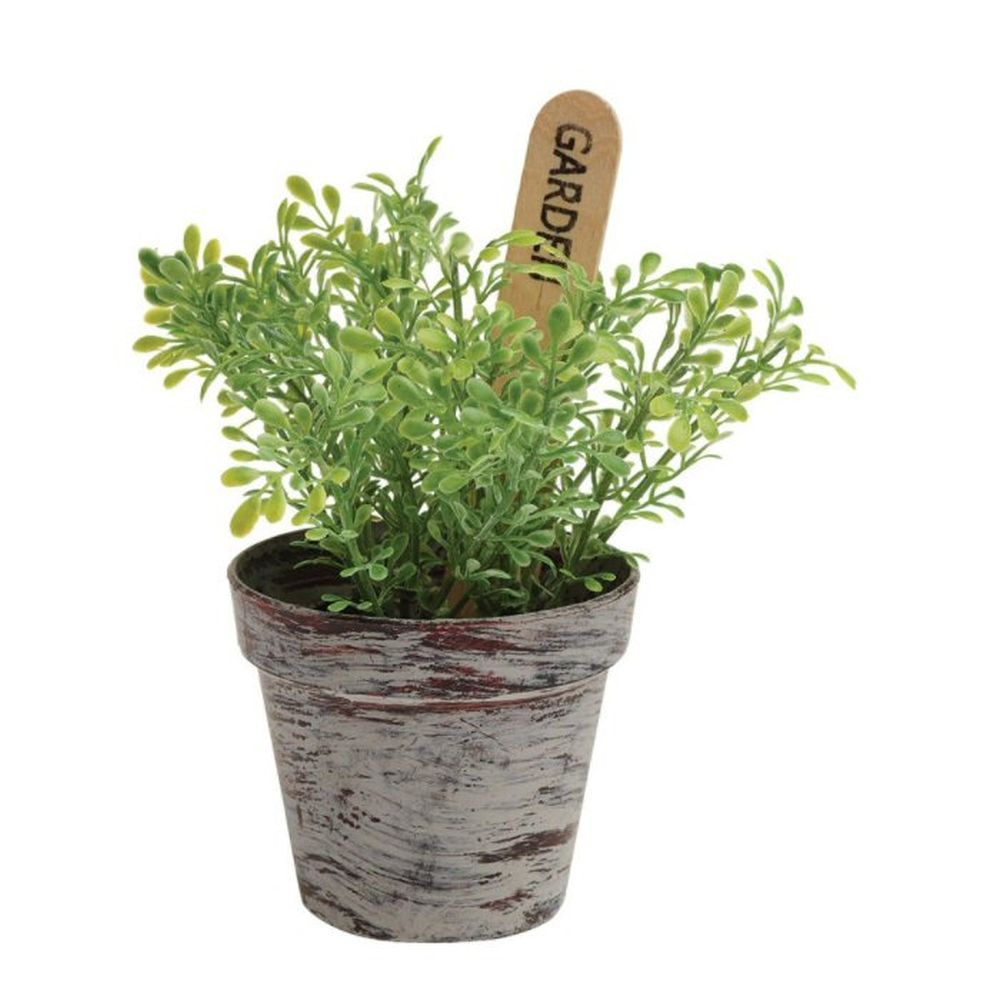 Gardman Mixed Herb Plastic Plant (Choice of 3)