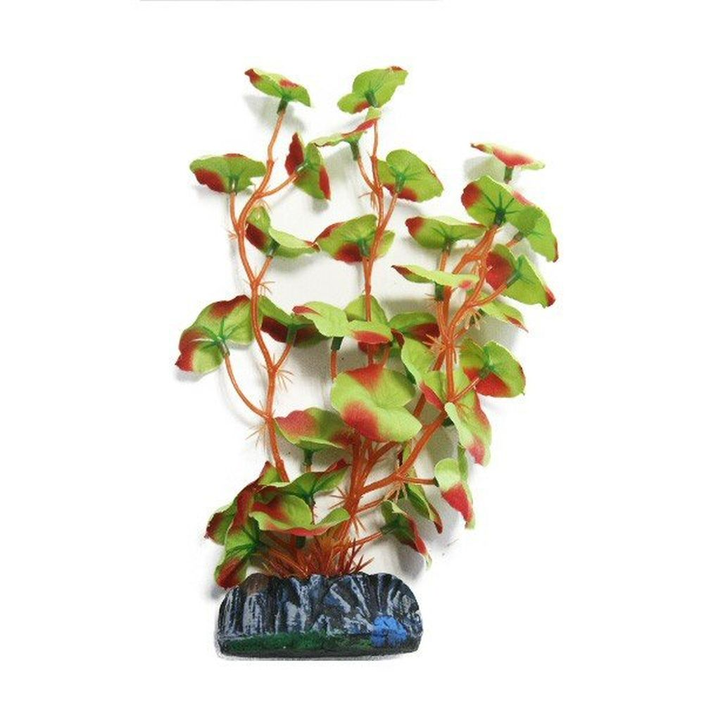 Betta Choice 20cm Red-Edged Silk Hydrocotyle Plant - PP486