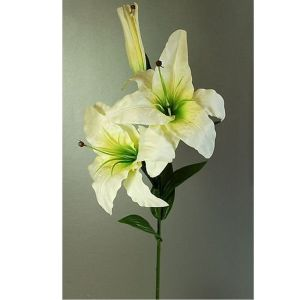 81cm Cream Casablanca Lily Stem