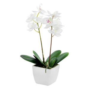 33cm Artificial Cream Mini Potted Orchid