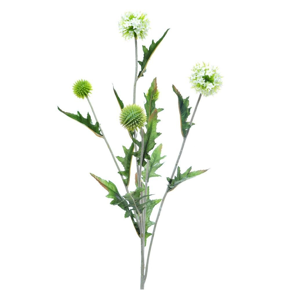 77cm White Globe Thistle Spray with 5 Heads