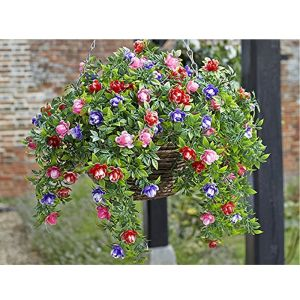 Smart Garden 30cm Bizzie Lizzie Hanging Basket 5040053