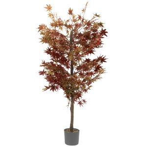 Smart Garden 40cm Uno Topiary Tree