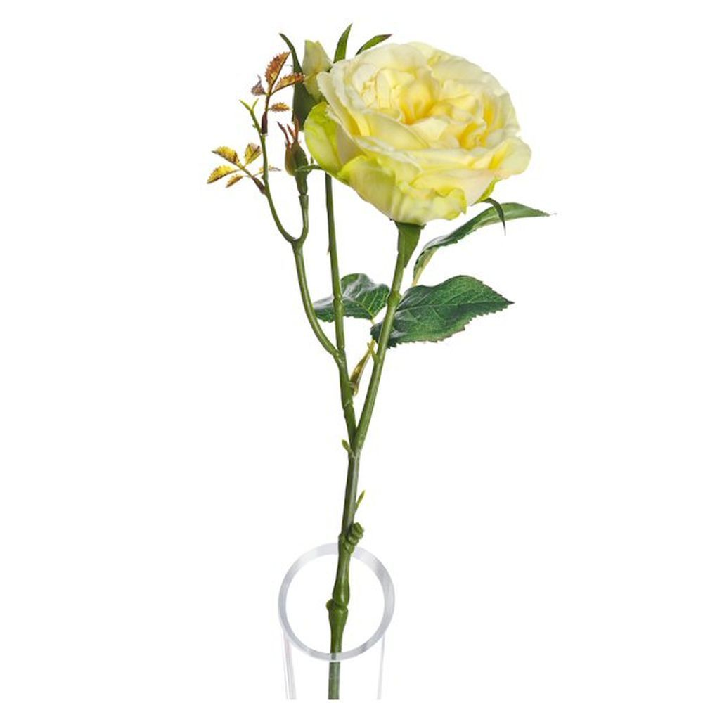 39cm Artificial Lemon Lydia Cabbage Rose Spray