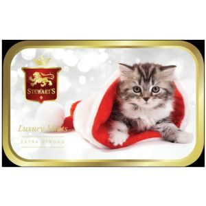 Stewarts 40g Mints in Winter Kitten Tin