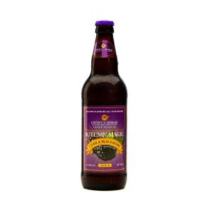 Gwynt Y Ddraig Autumn Magic Wild Blackberry Welsh Cider - 500ml