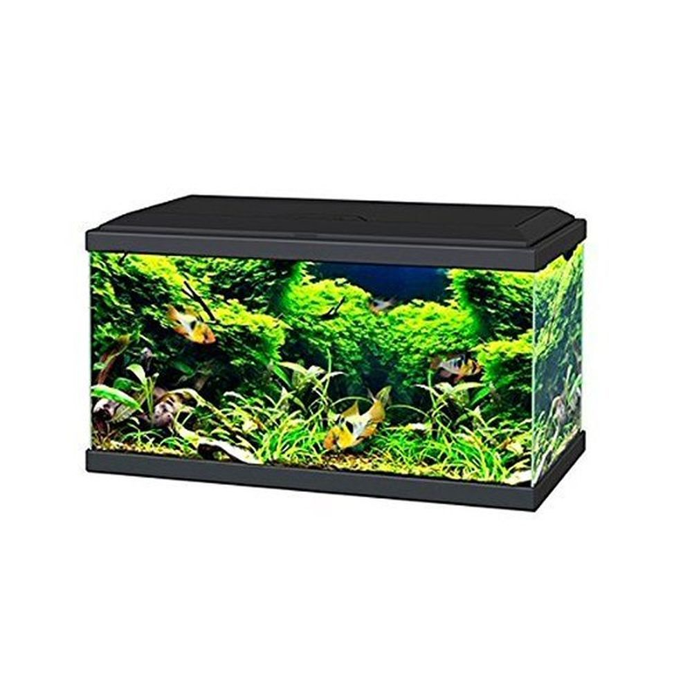 Ciano Black Aqua 60 LED Aquarium