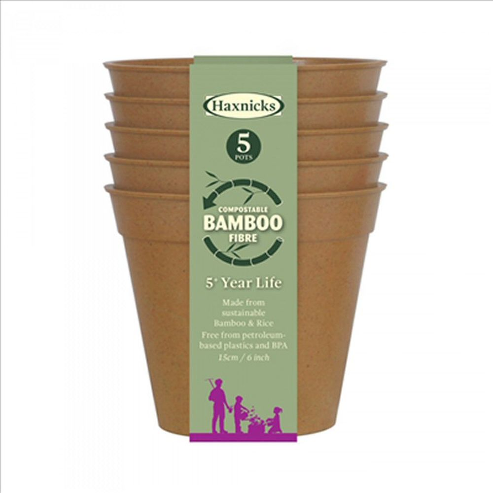 "Haxnicks 6"" Terracotta Bamboo Pots (Pack of 5)"