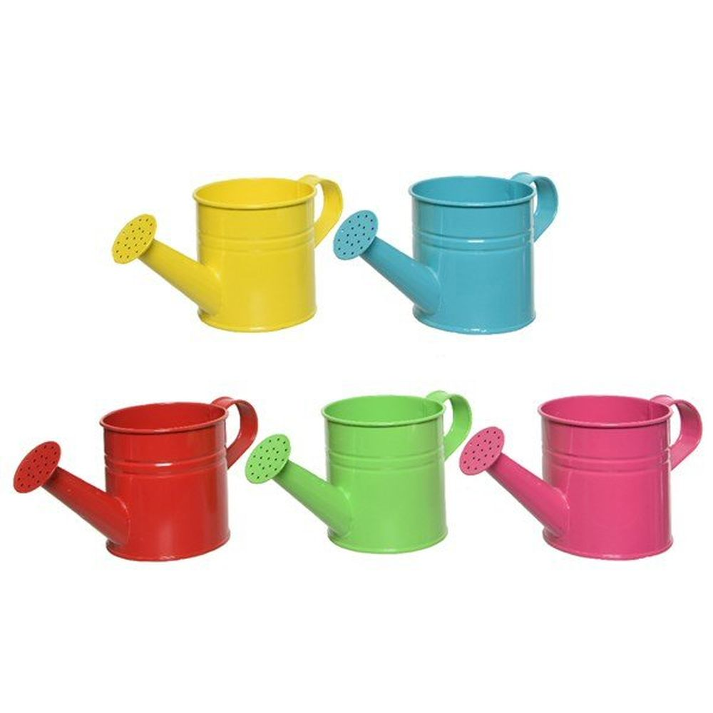 Kaemingk Colourful Zinc Watering Can (Choice of 5)