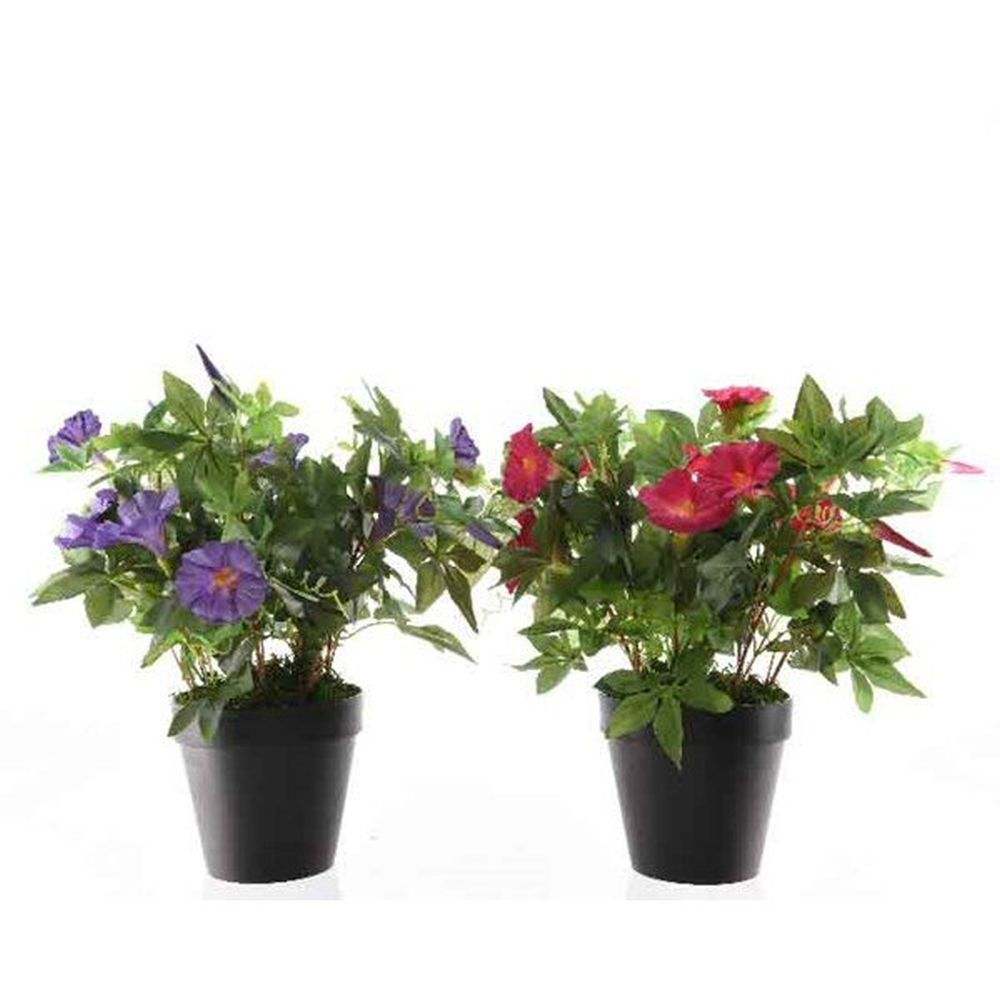 Kaemingk 54cm Morning Glory Artificial Pot Plant (Choice of 2) - 802120