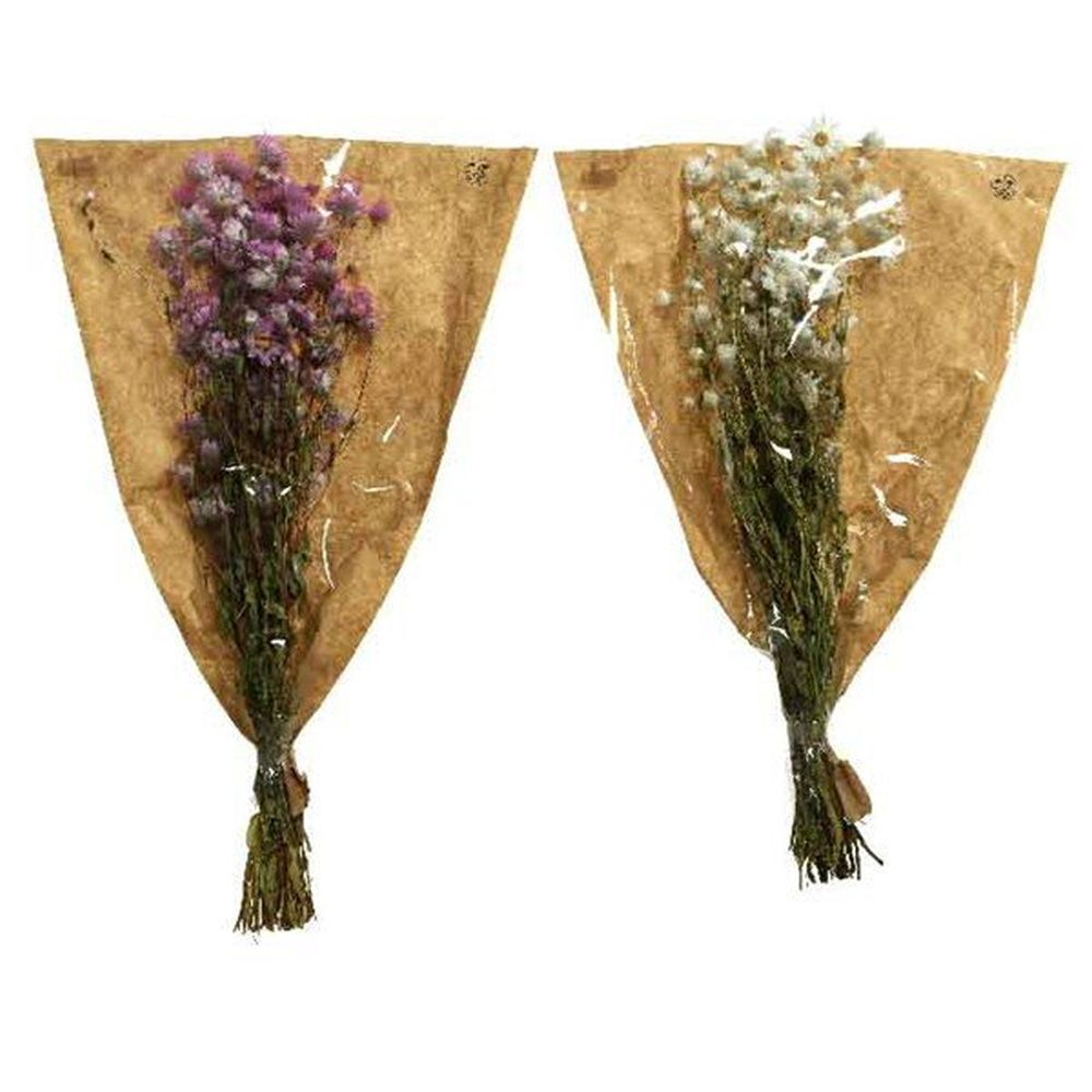 Kaemingk 50cm Dried Rhodanthe Artificial Flowers (Choice of 2)