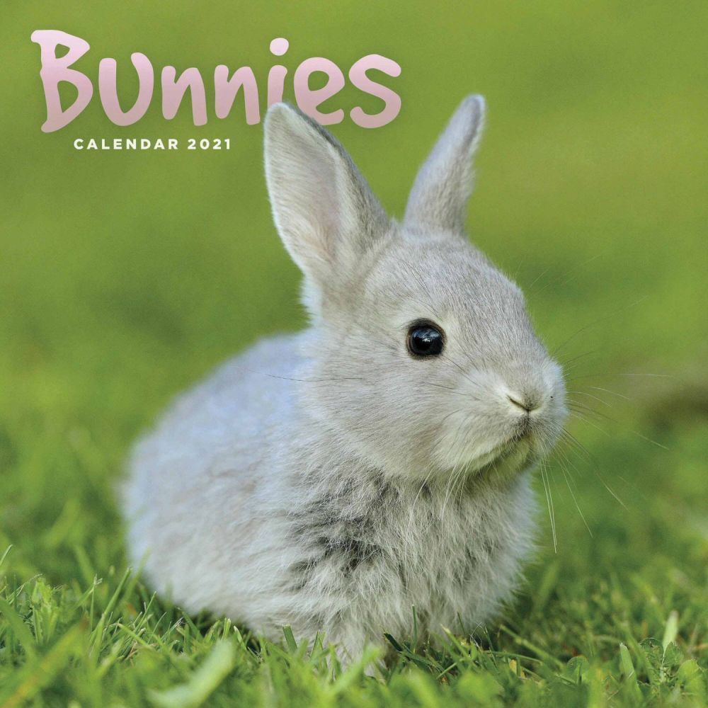 Bunnies 2021 Mini Wall Calendar